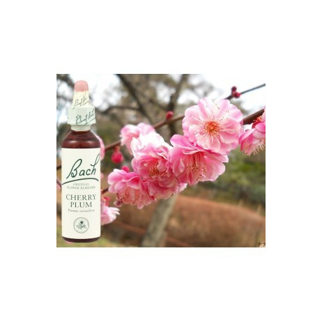 BACH Cherry Plum - Prunus 20ml