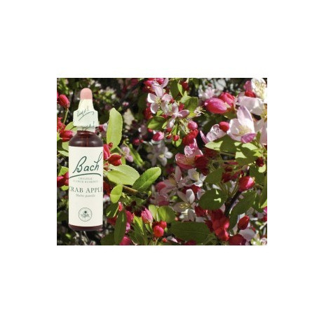 BACH Crab apple - Pommier sauvage 20ml